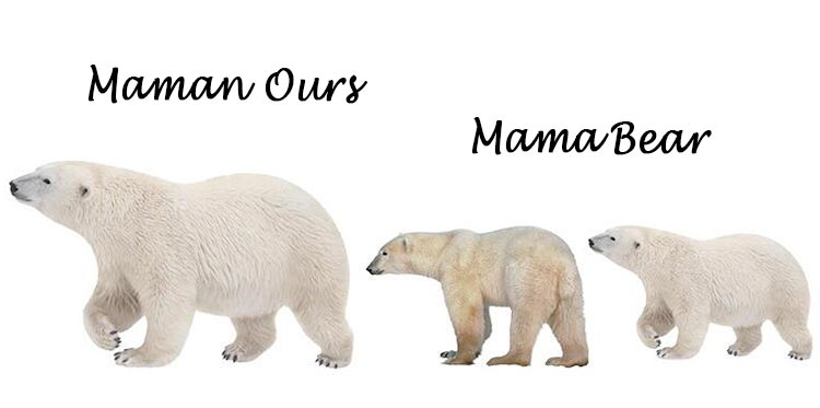 Imane-collier-Maman-Ours