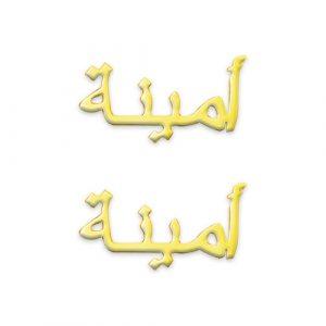 Boucles d'oreilles personnalisées en arabe